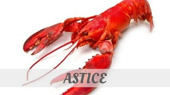 How Do You Pronounce Astice?