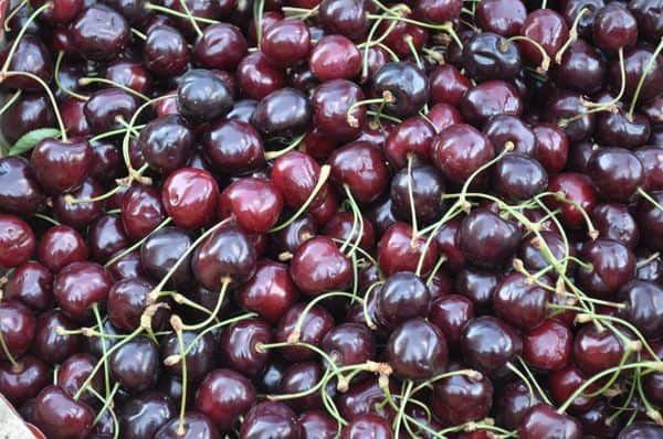 Ciliege, How To Say Cherries In Italian