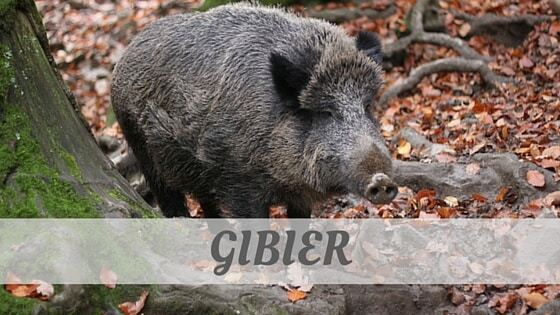 How Do You Pronounce Gibier?
