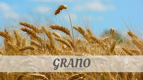 How Do You Pronounce How To Say Grano?