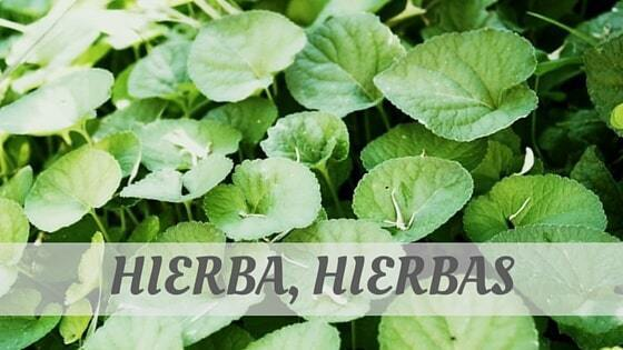 How To Say Hierba