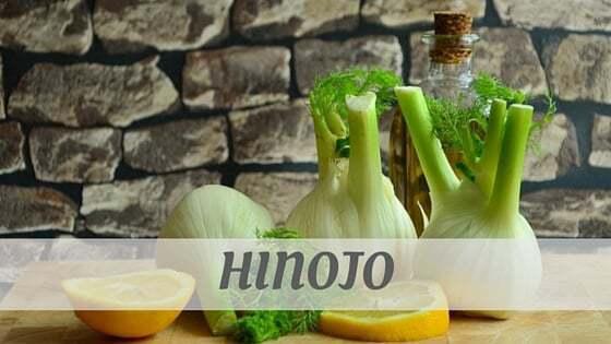 How Do You Pronounce Hinojo?