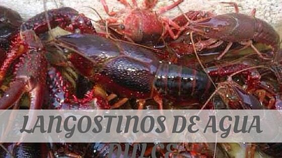 How To Say Langostinos De Agua Dulce