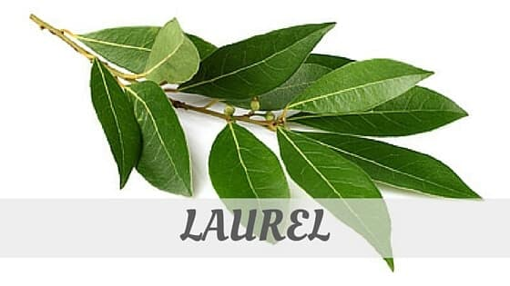 How To Say Laurel