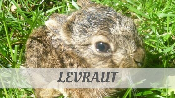 How To Say Levraut?
