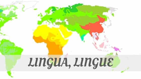 How Do You Pronounce How To Say Lingua, Lingue?