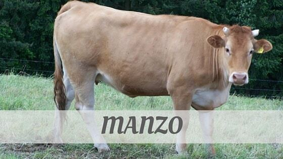 How To Say Manzo