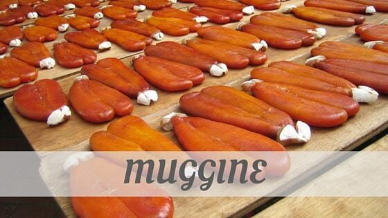 How To Say Muggine?