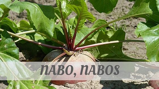 How To Say Nabo, Nabos?