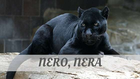How To Say Nero