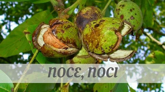 How To Say Noce