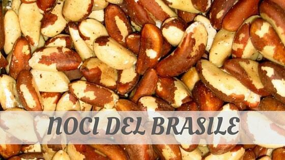 How Do You Pronounce How To Say Noci Del Brasile?
