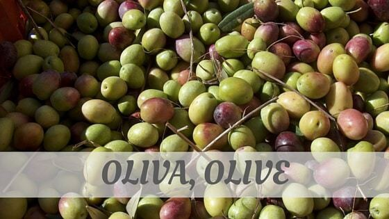 How Do You Pronounce Oliva, Olive?
