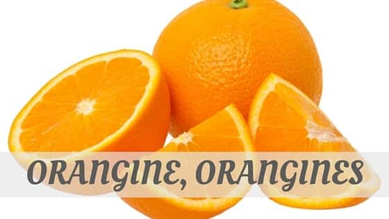 How To Say Orangine, Orangines?