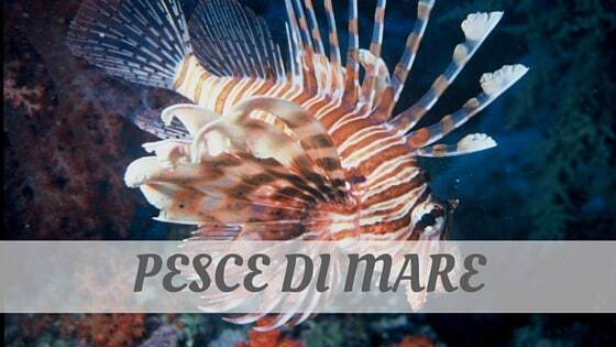 How Do You Pronounce Pesce Di Mare?