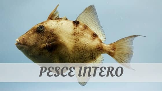 How To Say Pesce Intero