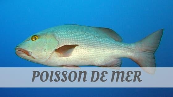 How To Say Poisson De Mer?