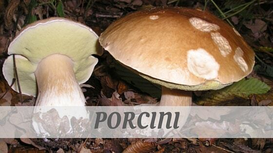 How To Say Porcini?