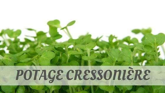 Potage Cressonière 2