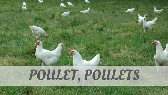 How To Say Poulet, Poulets?