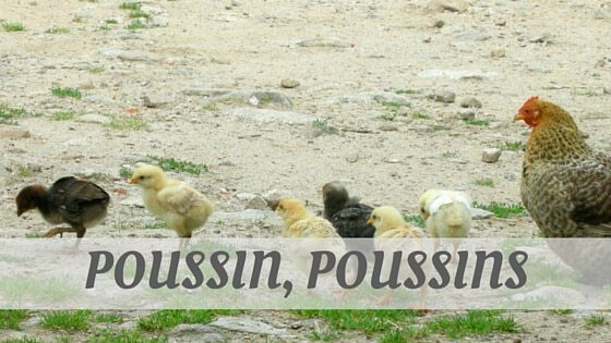 How Do You Pronounce Poussin, Poussins?