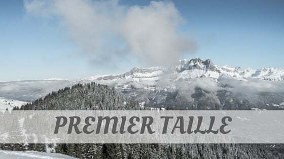 How Do You Pronounce Premier Taille?