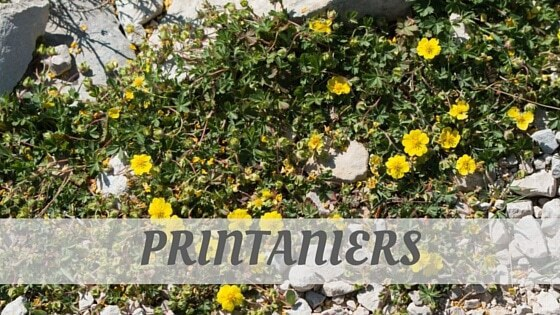 How Do You Pronounce How To Say Printaniers?