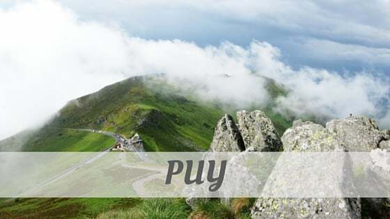 How Do You Pronounce Puy?