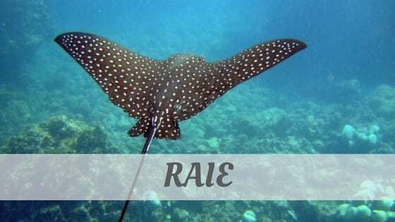 How Do You Pronounce Raie?