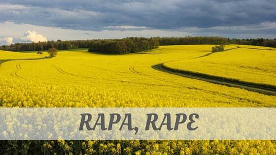 How To Say Rapa