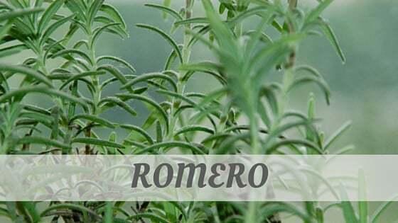 How Do You Pronounce Romero?