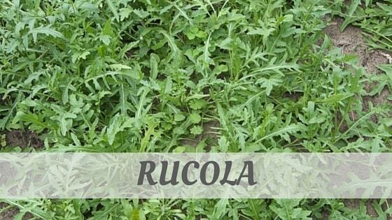 How To Say Rucola