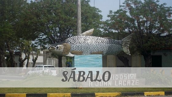 How To Say Sábalo?