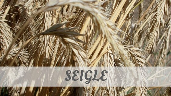 How Do You Pronounce Seigle?