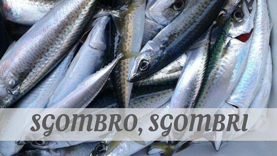 How Do You Pronounce How To Say Sgombro, Sgombri?