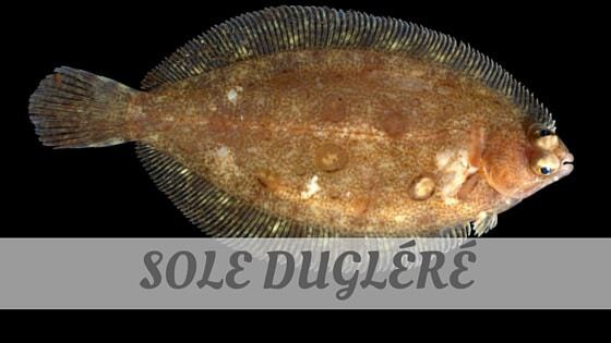 How To Say Sole Dugléré?