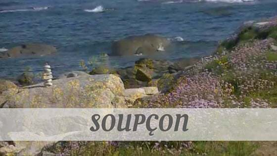 How To Say Soupçon?