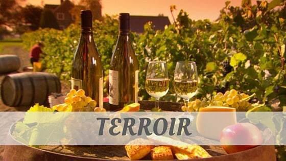 How To Say Terroir?
