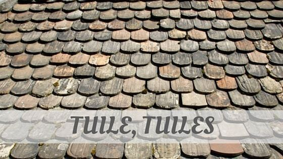 How Do You Pronounce Tuile, Tuiles?