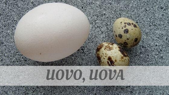 How To Say Uovo, Uova?