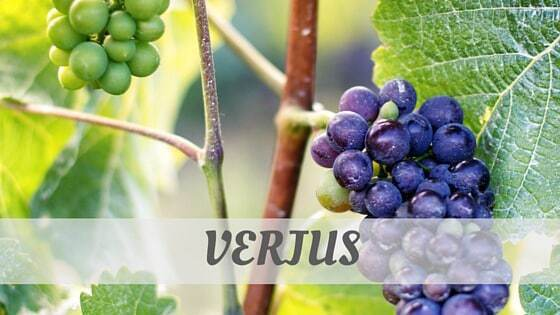 How Do You Pronounce How To Say Verjus?
