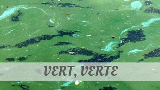 How Do You Pronounce How To Say Vert, Verte?