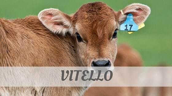 How To Say Vitello