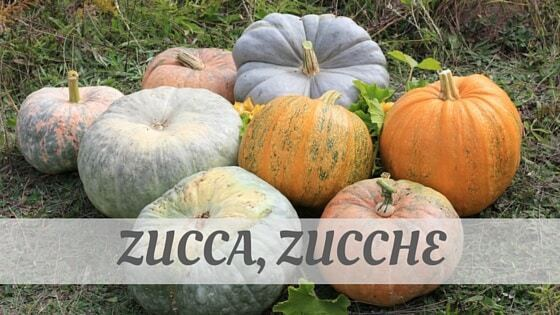 How Do You Pronounce Zucca, Zucche?