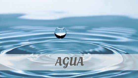 How To Say Agua