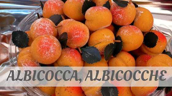 How To Say Albicocca
