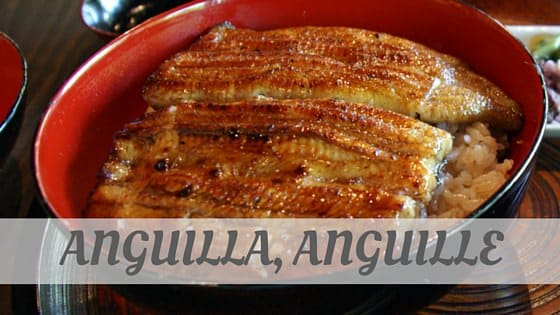 How To Say Anguilla, Anguille?