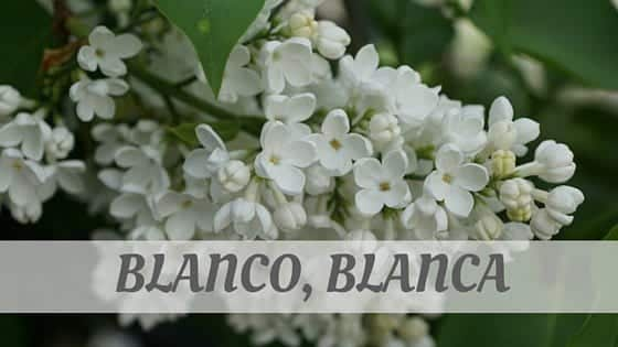 How To Say Blanco