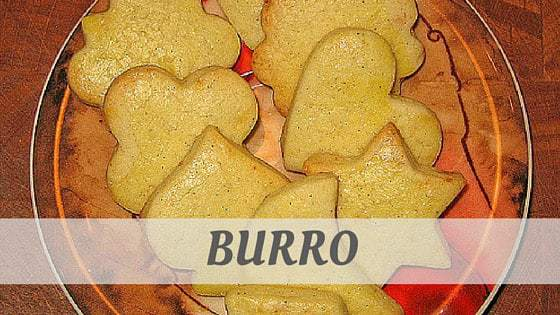 How Do You Pronounce Burro?