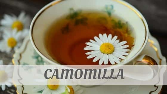 How To Say Camomilla
